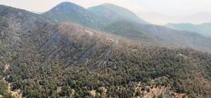 Hatay'da orman yangını üçüncü gün kontrol altına alındı Karadan ve havadan soğutma çalışmaları sürüyor