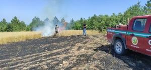 Ses bombasından çıkan alevler tarım arazisini küle çevirdi Osmaneli 'de 10 dönümlük buğday tarlası yandı