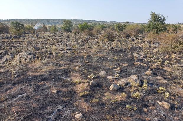 Simav'da makilik alanda çıkan yangın söndürüldü