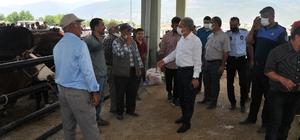Başkan Akkaya hayvan pazarında alışveriş yapanlarla buluştu