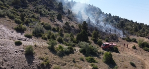 Ormanlık sahada çıkan yangın kontrol altına alındı