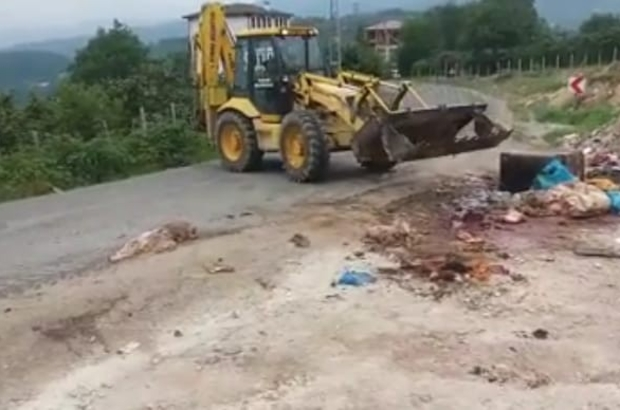 Çevreye atılan kurbanlık atıkları, belediye ekiplerince temizlendi
