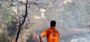 Suriye sınırında orman yangını Suriye tarafında devam eden orman yangını Türkiye'ye sıçradı 1 hektarlık ormanlık alanın zarar gördüğü yangın kısa sürede kontrol altına alındı
