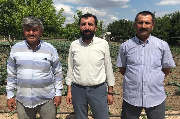 """Oda başkanlarından 71 Evler Pazarı iddialarına yanıt Eskişehir Yaş Sebze Meyve Üreticiler Birliği Başkanı Yıldıran Kılıç: """"Yapılacak pazar yerlerinin kapalı ve insani şartlarda olmasını istiyoruz"""""""