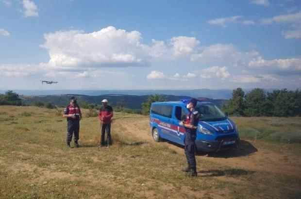 Kaybolan 3 adet büyükbaş hayvan jandarmanın drone çalışması ile bulundu