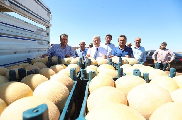 Başkan Tahmazoğlu, çiftçilerle ekti çiftçilerle topladı