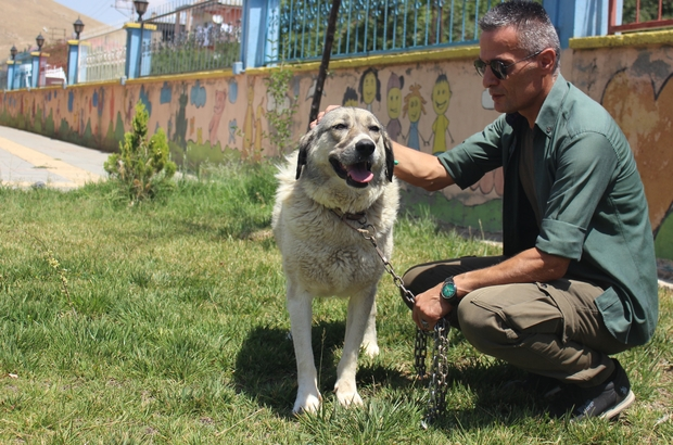Ölüme terk edilen köpekle engellilerin 'Dost'luğu devam ediyor