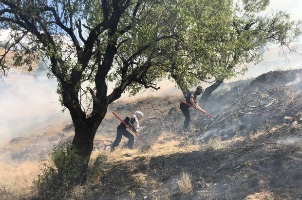 (ÖZEL) Anız yangınına kadın itfaiyeci müdahalesi