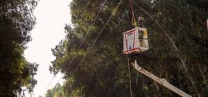 Toroslar EDAŞ, Gaziantep'i bakım ve yatırımlarıyla aydınlattı