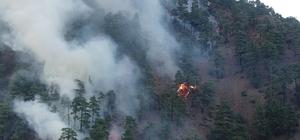 """Vali Günaydın: """"Yanan yerlerin büyük kısmı örtü yangını, ormanlarımızda büyük kaybımız yok"""" Kayseri'de 80 hektarlık alanda çıkan yangını söndürme çalışmaları devam ediyor"""