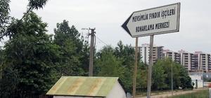Mevsimlik fındık işçileri için pandemi koşullarına uygun konaklama merkezi hazırlandı