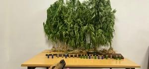 Yenice'de uyuşturucu operasyonu: 1 gözaltı