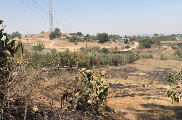 Tarsus'ta bahçedeki yangında 43 ağaç zarar gördü