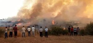 Aladağ'daki yangına müdahale sürüyor