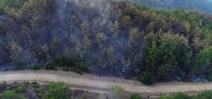 Kozan'daki yangın kontrol altına alındı Orman yangının büyüklüğü drone ile görüntülendi