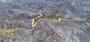 Aladağ'da yanan ormanlık alanlar drone ile görüntülendi