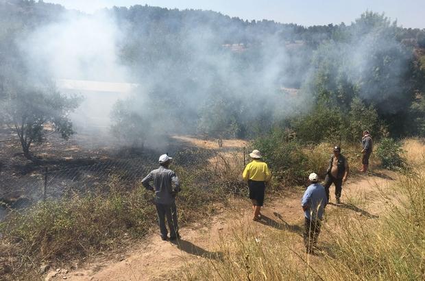 Ormanın bitişiğinde bulunan tarım arazisindeki yangın korkuttu