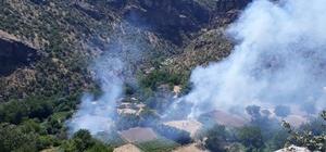 Elazığ'da çıkan orman yangını kısa sürede söndürüldü
