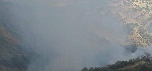 Adıyaman'da orman yangını Yangın kısa sürede kontrol altına alındı