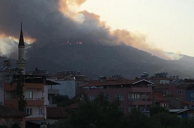 Aydın'da orman yangını karacasu'daki yangın rüzgar ile birlikte büyüdü -  Aydın Haberleri