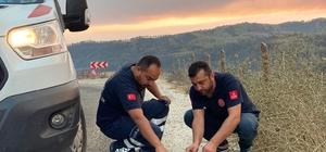 Afyonkarahisar ambulans ve UMKE ekipleri yangın bölgesinde