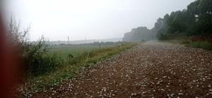 Balkanlardan gelen yağışlı hava dolu getirdi: Ceviz büyüklüğünde dolu yağdı