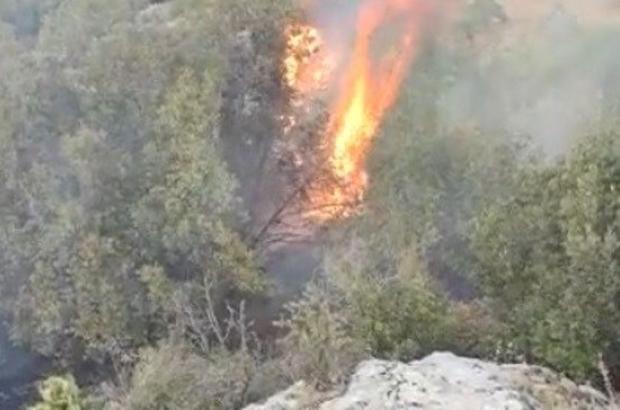 Gaziantep'te orman yangını Alevler büyümeden yangın söndürüldü