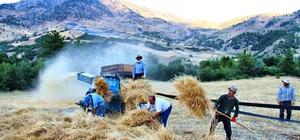 Göksun'da ekinler biçilmeye başladı Kahramanmaraş'ta hasat zamanı