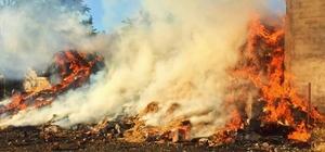 Edirne'de yangında 3 bin 500 saman balyası yandı
