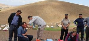 Sağlık ekipleri yaylada vatandaşlara Covid-19 aşısı uyguluyor