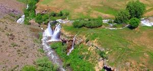Erzincan'da Konarlı Şelalesi doğal güzelliğiyle cezbediyor