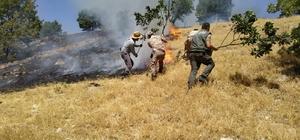 Adıyaman'da örtü yangını