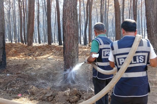 Marmaris polisi yangından zarar gören ağaçları yeniden yeşertmek için seferber oldu Önce dibini açtılar, temizleyip ve suladılar