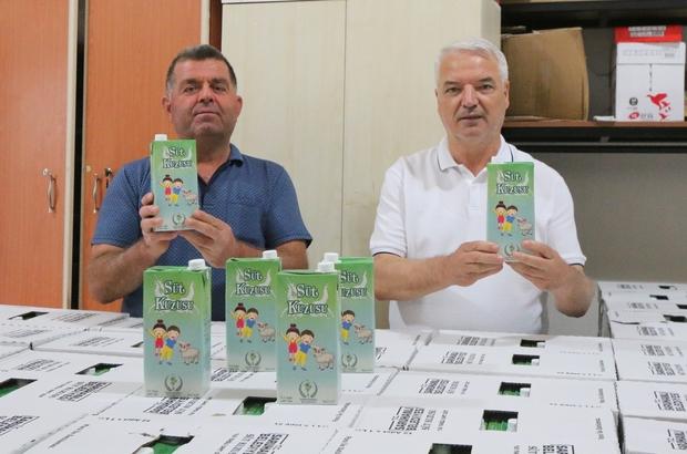 """Saruhanlı Belediyesinin 'Süt Kuzusu' Projesi başladı Belediye Başkanı Zeki Bilgin: """"Sağlıklı nesiller yetiştireceğiz"""""""