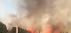 Orman yangını kadınları korkuttu Kahramanmaraş'ta çıkan orman yangınını gören kadın, hem yangını görüntüledi hem de gözyaşları ile anlattı