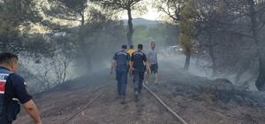 Hatay'da orman yangını Hatay'daki orman yangınına jandarma ekipleri de müdahale etti