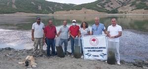 Tunceli'de Günboğazı Göletine 100 bin pullu sazan yavrusu bırakıldı
