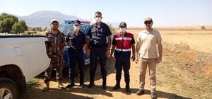 Kaçak avcılar, ekipleri görünce tüfeklerini atıp kaçtı
