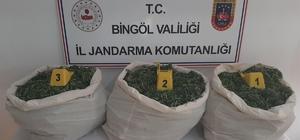 Bingöl'de terörün finans kaynağına darbe Bingöl'de düzenlenen operasyonlarda 353 kilo uyuşturucu ve 113 bin kök kenevir bitkisi ele geçirildi