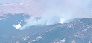 2 helikopter ve 1 uçağın müdahale ettiği Tunceli'deki orman yangınının yüzde 95'i söndürüldü