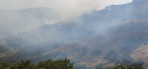 Bingöl'de 2 farklı noktada orman yangını