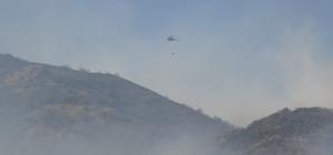 Bingöl'deki orman yangınını söndürme çalışmaları sürüyor