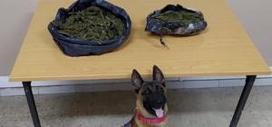 Hatay'da uyuşturucu operasyonu: 4 gözaltı