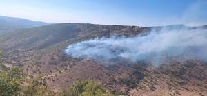 Bingöl'de 2 ayrı noktada çıkan orman yangını büyümeden söndürüldü