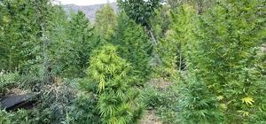 Bingöl'de çok miktarda uyuşturucu ele geçirildi
