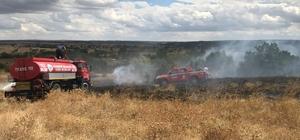 Edirne'de ormanlık alanda korkutan yangın