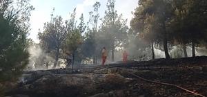 Kozan'daki Hatıra Ormanı'nda yangın Yangın havadan ve karadan yapılan müdahaleyle kontrol altına alındı