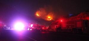 Bodrum'da sarp arazide çıkan yangın söndürüldü Yangında 5 hektar otluk alan kül oldu