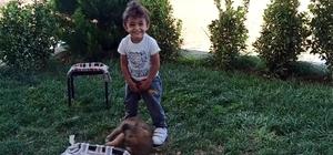 Minik çocukla yavru köpeğin oynaması kameraya yansıdı