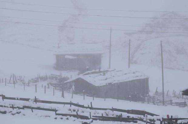 Doğu Karadeniz'in yüksek kesimlerinde kar kalınlığı 30 santimetreyi buldu Bölgede bulunan ziyaretçiler karın keyfini çıkartırken, bölgede güzel görüntüler oluştu